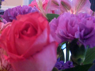 Flowers dec 28 09