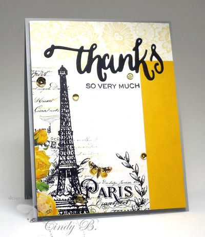 Paristhanks-2