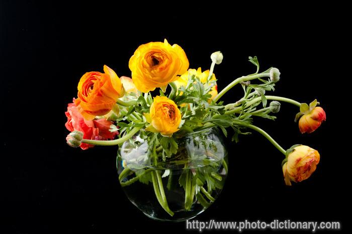 6193ranunculus_flowers